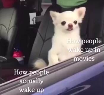How people actually wake up