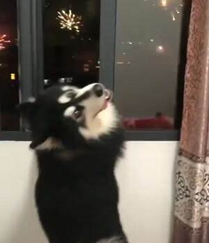 watching these fireworks