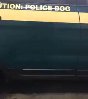 caution police dog