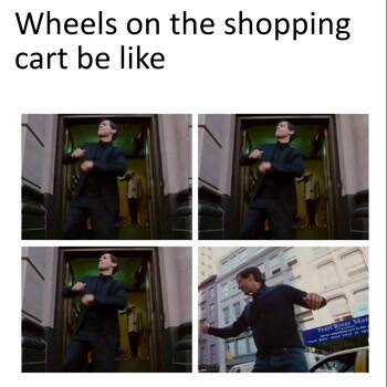 The wheels on the shopping cat be like
