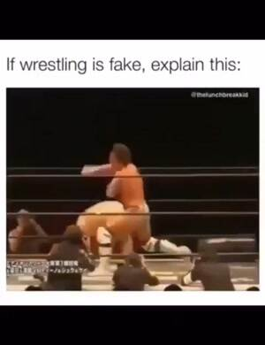 Wrestling cannot be fake