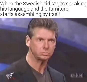 The swedish kid